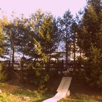 plakat nibiru skateboard